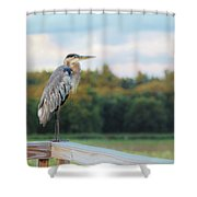 Great Blue Great View Great Meadows Shower Curtain