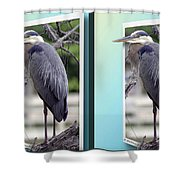 Great Blue Heron - Gently Cross Your Eyes And Focus On The Middle Image Shower Curtain