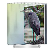 Great Blue Heron - Red-cyan 3d Glasses Required Shower Curtain