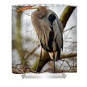 Great Blue Heron 1 Shower Curtain