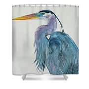 Great Blue Heron 2 Shower Curtain by Jani Freimann