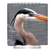Great Blue Heron 5 Shower Curtain
