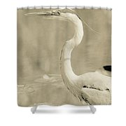 Great Blue Heron Alternate Processed Shower Curtain