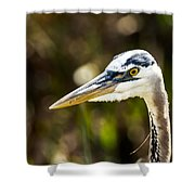 Great Blue Heron At Green Cay Shower Curtain