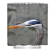 Great Blue Heron At  Morikami Gardens  Shower Curtain