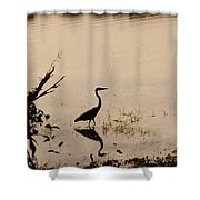 Great Blue Heron At Rollins Shower Curtain