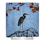 Great Blue Heron At Shores Of King's Mountain Point Shower Curtain