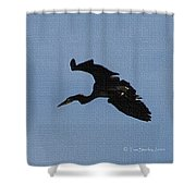 Great Blue Heron At The Gilbert Riparian Preserve Shower Curtain