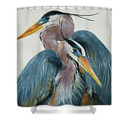 Great Blue Heron Couple Shower Curtain by Jani Freimann