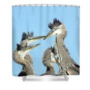 Great Blue Heron Discussion Shower Curtain