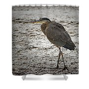 Great Blue Heron In The Snow Shower Curtain