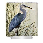 Great Blue Heron Splendor Shower Curtain by James Williamson