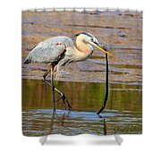 Great Blue Heron Wrestles A Snake Shower Curtain