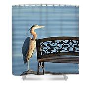 Great Blue Heron....resting My Leg Shower Curtain
