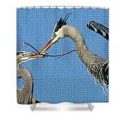 Great Blue Herons Build A Nest Shower Curtain
