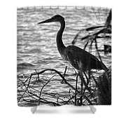 Great Blue In Black And White Shower Curtain