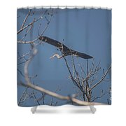 Great Blue In Flight Shower Curtain