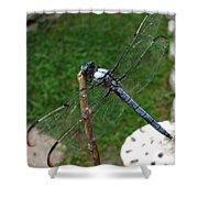 Great Blue Skimmer Shower Curtain