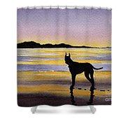 Great Dane At Sunset Shower Curtain