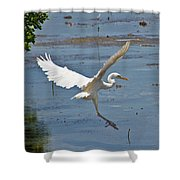 Great Egret Ascending Shower Curtain