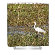 Great Egret Fishing Shower Curtain