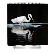 Great Egret Fishing In Early Morning Shower Curtain