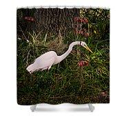 Great Egret In The Garden Shower Curtain