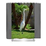 Great Egret Just Strutting Impressionism 1 Shower Curtain