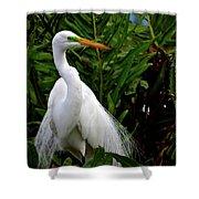 Great Egret Nesting Shower Curtain