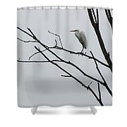 Great Egret On High Shower Curtain