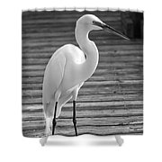 Great Egret On The Pier - Black And White Shower Curtain