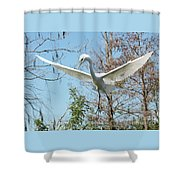 Great Egret Over The Treetops Shower Curtain