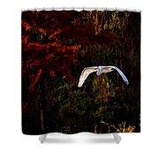 Great Egret Paradise Flight Shower Curtain