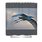 Great Egret Soaring Gracefully Shower Curtain