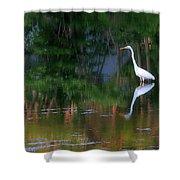 Great Egret Summer Pond Shower Curtain