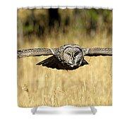 Great Gray Owl In Flight Shower Curtain