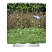 Great Heron In Flight 2 Shower Curtain