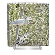 Great Heron With Mouth Open Shower Curtain
