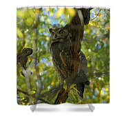 Great Horned Majesty Shower Curtain