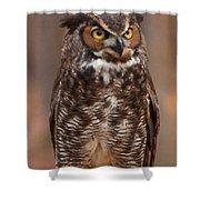 Great Horned Owl Digital Oil Shower Curtain