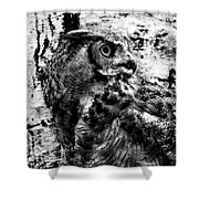 Great Horned Owl In Black And White Shower Curtain