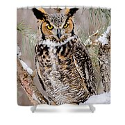 Great Horned Owl Nature Wear Shower Curtain