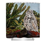 Great Horned Owl - Owl On The Rocks Shower Curtain