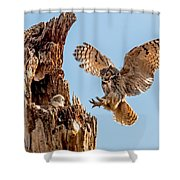 Great Horned Owl Returning To Her Nest Shower Curtain