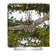 Great Horned Owl Takeoff Shower Curtain