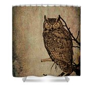 Great Horned Owl With Textures Shower Curtain