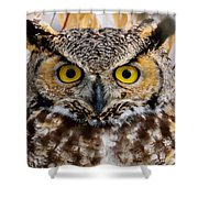 Great Horned Stare Shower Curtain