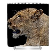 Great Lioness Shower Curtain