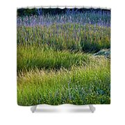 Great Marsh Grass Shower Curtain