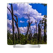 Great Meadow Shower Curtain